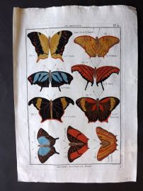 Diderot C1790 Antique Hand Col Print. Butterflies 11